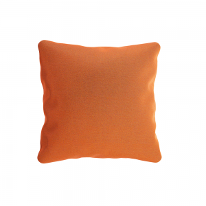 Square Scatter Cushion